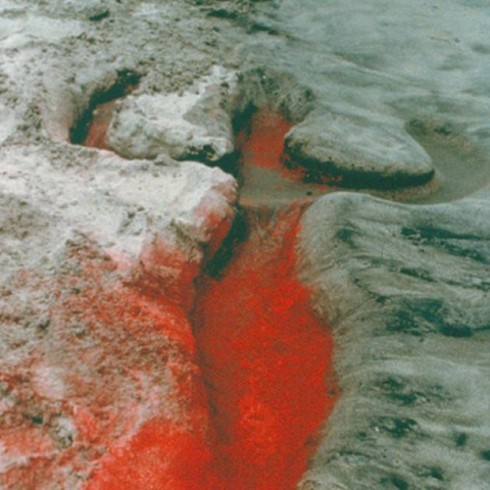 Ana-Mendieta_fire
